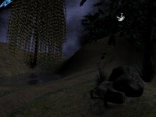 Landscape_night_final